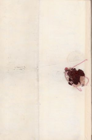 Дипломатичний паспорт УНР радника Посольства УНР у Туреччині Л. Кобилянського. 16 серпня 1919 р.