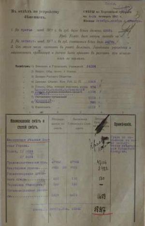 Кошторис на влаштування біженців по Херсонській губернії на ІV квартал 1917 р.